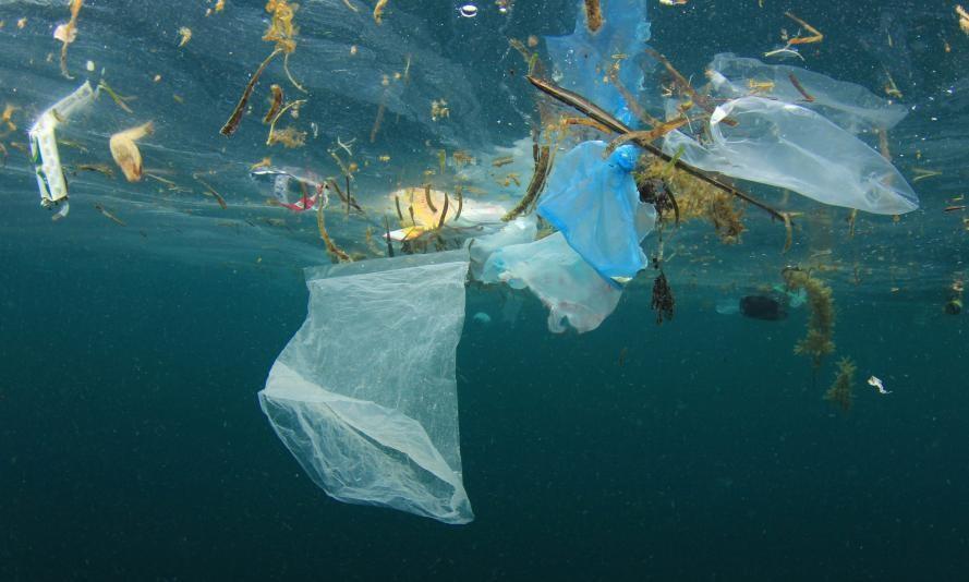 Pollution plastique dans les mers et océans